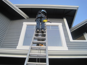 Window cleaning 2 story